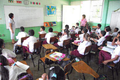 La base de datos permitirá consultar si los alumnos de cada escuela del país disponen de equipamiento adecuado para tomar clases.