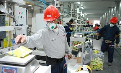 Ha crecido significativamente la proporción de trabajadores que no pueden adquirir la canasta alimentaria con su salario.
