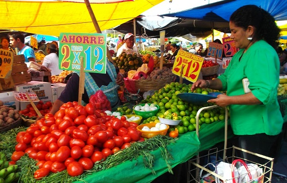 El jitomate es el producto que incidió en mayor medida al índice de precios a la baja.