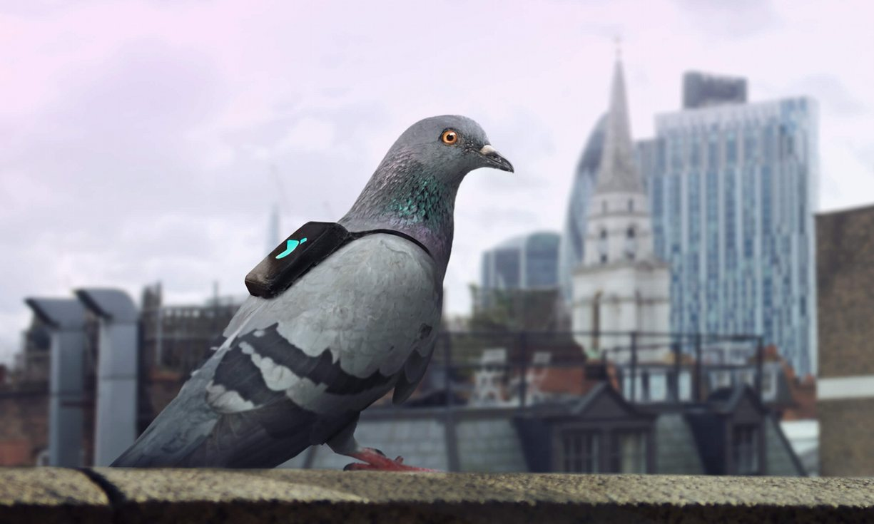 Proyecto de innovación con dispositivo inteligente para poner en evidencia el problema de calidad del aire en Londres