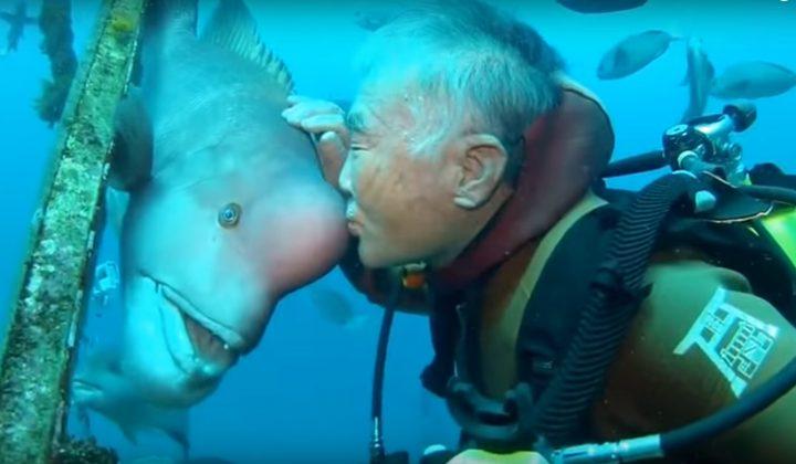 Una relación amistosa entre dos seres de distinta especie que se ha impuesto a los años y a las diferencias
