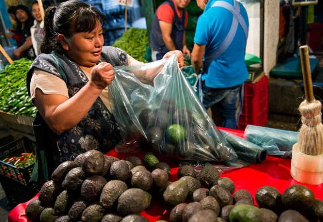 El aguacate llegó a los 70 pesos o más en el año, difícil de adquirir para los 7.5 millones de personas que ganan un salario mínimo diario por 80.04 pesos.
