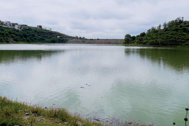Investigadores de la UNAM, el IPN y la UAEM evaluaron la toxicidad producida por el aluminio en especies de peces consumidos por los pobladores aledaños a la presa.