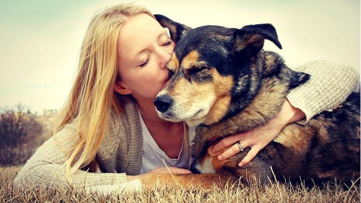 Besar a tu perro puede matarte. El Dr. Masahiko Nakamura realizó una investigación en donde demuestra los daños que provoca besar a tus mascotas en la boca.