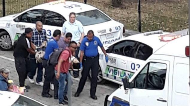 Aún no hay una declaración oficial por parte de la UNAM ni de instituciones de seguridad pública sobre los acontecimientos ni los heridos.
