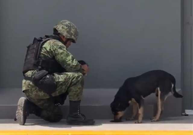 Este soldado se ganó la atención de los internautas