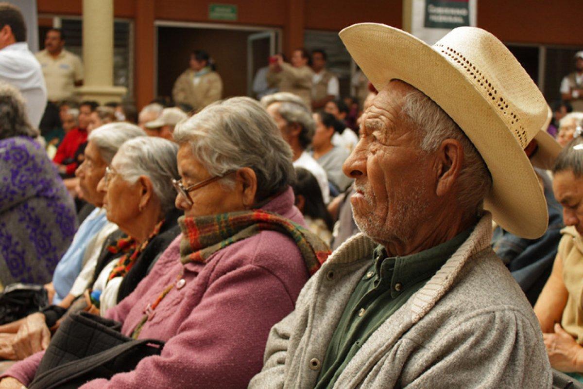 Más de 7.6 millones de mexicanos tienen 65 años o más, y cerca de 5.6 millones carecen de pensión alguna.