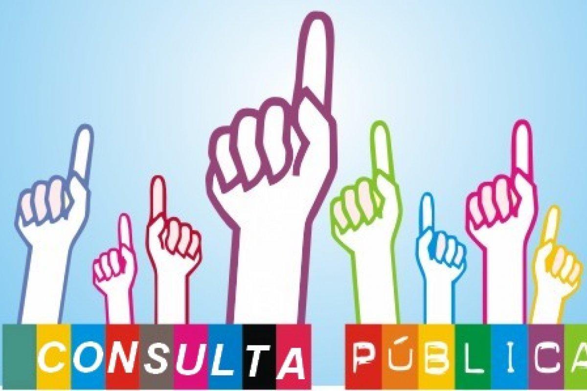 La consulta pública concluirá el 8 de agosto del 2014.