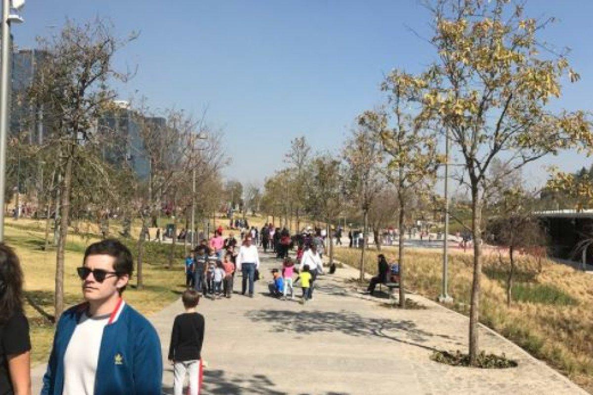 En algunas delegaciones el área verde por habitante es de apenas 3 metros cuadrados.