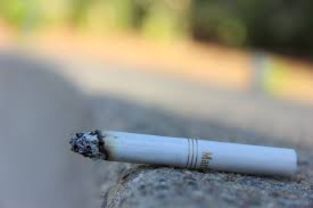 Invirtieron aproximadamente 5 mil millones de dólares en 10 años, para la creación de productos libres de humo