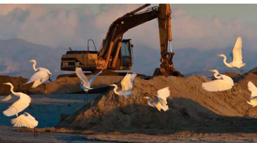 Después de que la constructora española Hansa falló en su intento de construir un mega desarrollo turístico en Baja California Sur, el banco Sabadell terminó como propietario de esos terrenos protegidos por ambientalistas mexicanos y extranjeros.